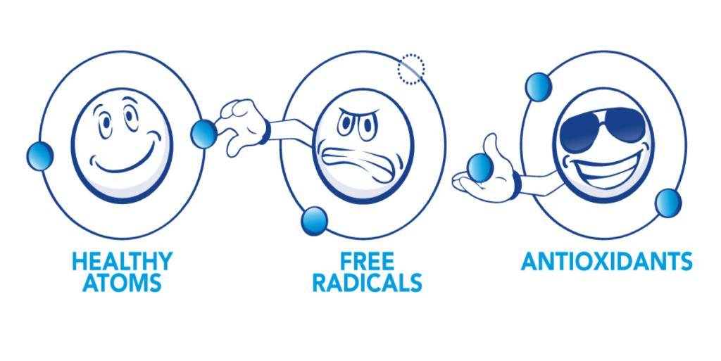 Gốc tự do và chất chống oxy hóa
