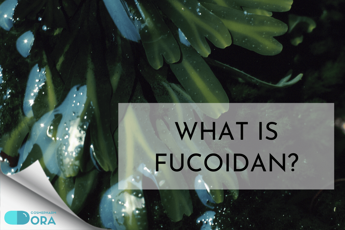 What is Fucoidan?