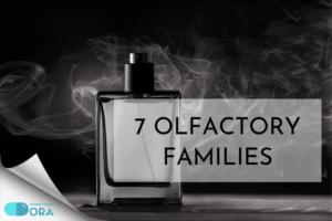 7 họ hương nước hoa chính